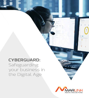 CyberGuard Solutions Brochure